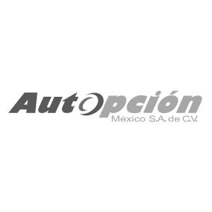 autopcion_mex